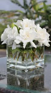 gardenia flower delivery centerpieces the beautiful and most fragrant gardenia plans
