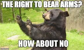 Right To Bear Arms Meme - the 2nd amendment is cruel to bears imgflip
