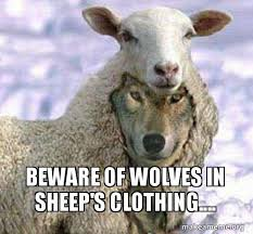 Meme Clothing - beware of wolves in sheep s clothing make a meme