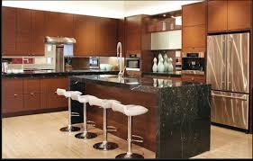Designer Kitchens Kitchen Is Software Kitchen Pleasant Design Kitchens Diy