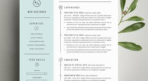 resume amazing design best resumes 11 examples of good resumes