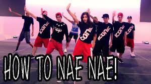 Dance Tutorial Whip Nae Nae | how to nae nae dance tutorial ft the iconic boyz hip hop moves