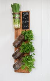 Wall Hanging Planters by Best 25 Indoor Herb Planters Ideas Only On Pinterest Growing
