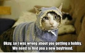 21 Of The Best Grumpy - 25 best memes about new boyfriend new boyfriend memes
