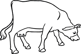 printable cow coloring pages for kids cool bkids and calf book