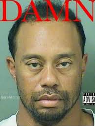Tiger Woods Memes - fans react to tiger woods mug shot with hilarious memes