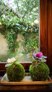75 best kokedama images on pinterest string garden ikebana and