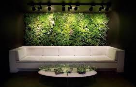 indoor wall garden indoor succulent wall garden for the home pinterest