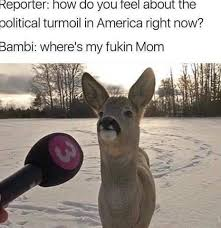 Funny Deer Memes - do you feel deer meme