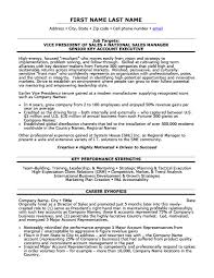 download vice president resume samples haadyaooverbayresort com