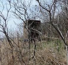 Tree Trunk Hunting Blind Portable Hunting Blinds Badgerland Hunting Blinds
