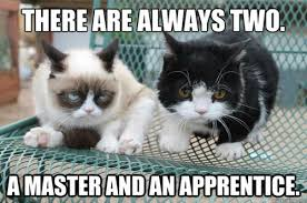 Grumpy Cat Yes Meme - yes yes my apprentice hate makes you stronger imgur tard