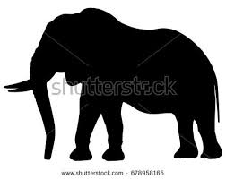 elephant silhouette stock images royalty free images u0026 vectors