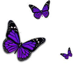 purple butterfly png transparent image png mart