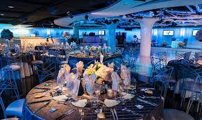 banquet halls in orange county turnip elite catering celebrations by turnip
