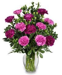 purple carnations up the purple one dozen purple carnations in lake wales fl