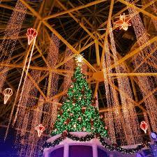 florida family holiday traditions christmas at gaylord palms resort