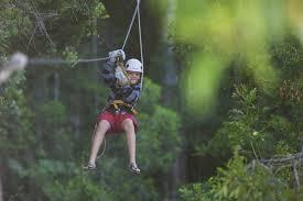Treetop Canopy Tours by Tsitsikamma Canopy Tour