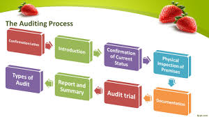 auditing organic food processors presented by maida asif 16