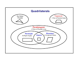 all worksheets quadrilateral worksheets third grade printable