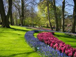 day trip to keukenhof the most beautiful garden in the world
