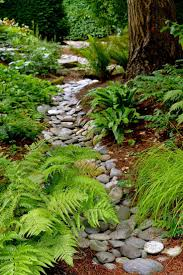 Rock Garden Plants Uk by Best 20 River Rock Landscaping Ideas On Pinterest River Rock