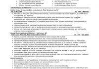 executive summary resume example examples personal senior sales