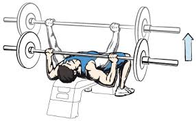 Flat Bench Press Dumbbell Chest Workout Be Your Best Protein Shakes And Creatine