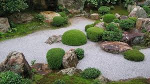 Japanese Rock Garden Plants What Plants To Use For Rock Garden Rock Gardening Tips