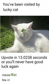 Good Luck Cat Meme - you ve been visited by lucky cat upvote in 130238 seconds or you ll