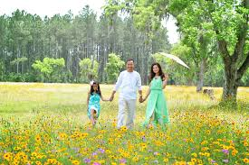 flowers jacksonville fl theduong family daydreaming in the yellow flower fields
