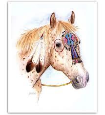 american war horses appaloosa american war pony