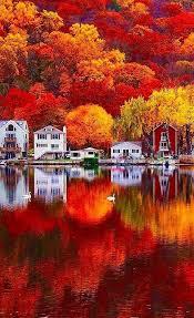 2681 best beautiful photography images on pinterest autumn