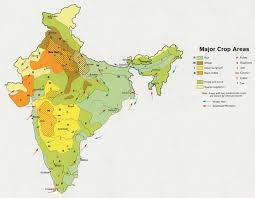 Gujarat Map Blank by India Vegetation Map Maps Of India