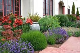Small Garden Plants Ideas Garden Plant Ideas Garden Decors Small Garden Plant Ideas