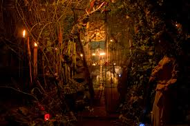 samhain the celtic roots of halloween live psychic readings