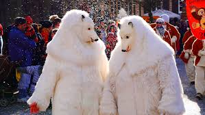 free images snow winter carnival color polar bear move