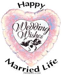 wedding wishes animation sticker for ios android giphy