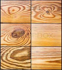 the abstract wood decor texture pine decoration set stock photo