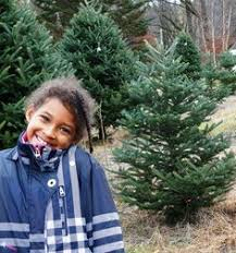 thank you to tim mollica of christmas trees of vermont for