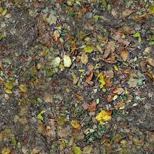 ground textures forest ground textures leaves 5 png opengameart org