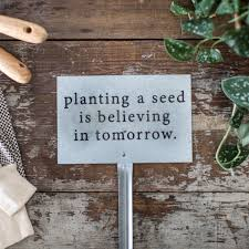 chip and joanna gaines garden planting a seed