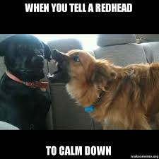 Redhead Meme - when you tell a redhead to calm down make a meme