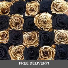 gold roses golden royale 12 or 24 black gold roses 1 800 blooming