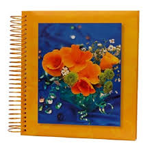 Photo Albums 4x6 500 Photos Photo Album Buy Photo Albums Online At Low Prices In India