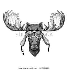 moose tattoo stock images royalty free images u0026 vectors