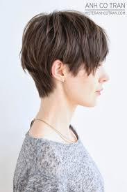 Best Haircuts For Thinning Hair Best 25 Brown Pixie Hair Ideas On Pinterest Brown Pixie Cut