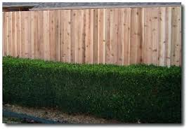 decorative fence panels home depot privacy fence panels decorative absolute privacy fence panel