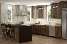 hickory kitchen cabinet design ideas kitchen stories a modern twist on hickory dura supreme
