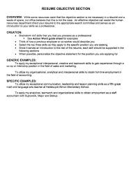 Sample Objective Statements For Resumes Essay On Slavery And Abolitionism Summary Spanish Ability On